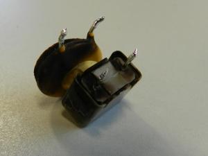 Figura 28 - Componentes removidos da fonte. Os dois estão queimados.