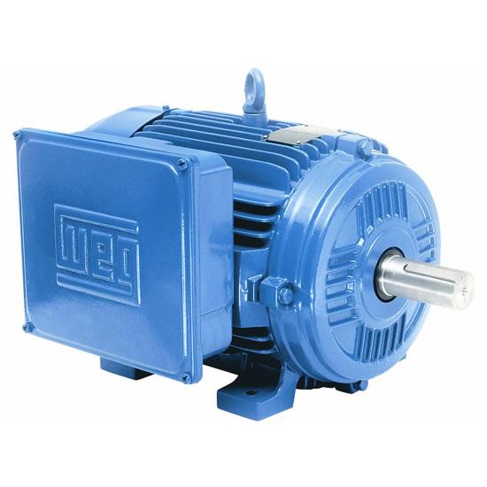 Figura 46 – Motor monofásico de duplo capacitor, para uso rural. Fonte: IFRN - WEG [71].