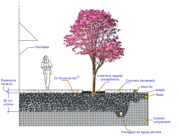 Fig. 33 – Instalação típica de solo estrutural em calçada, imagem traduzida do inglês. Fonte: Cornell University - UHI [7].
