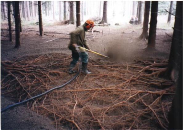Fig. 44 – Raízes de um bosque, expostas através da escavação a ar. Alguma vez você imaginou que elas fossem assim, entrelaçadas? Fonte: Research Gate [38].