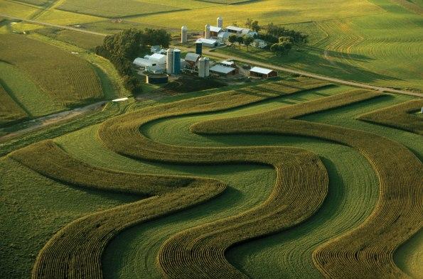 Fig. 83 – Mais um impressionante exemplo de agricultura de contorno, em local desconhecido. Fonte: Britannica [138].