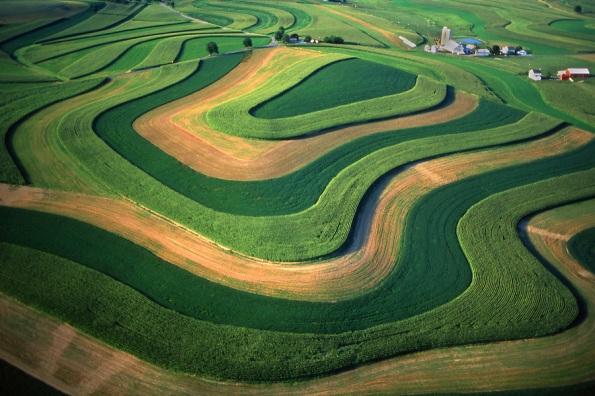Fig. 84 – Prática de agricultura de contorno no Condado de Berks, Pensilvânia, EUA. Fonte: Photoshelter [139].